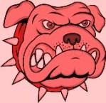 angry-dog-pink