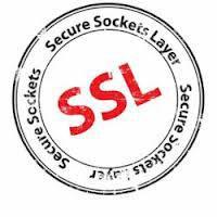 SSL logo 1