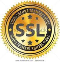 SSL logo 2